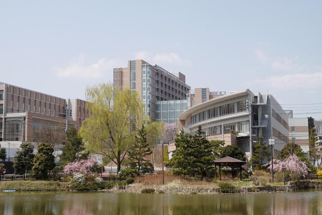 東北 医科 薬科 大学 薬学部
