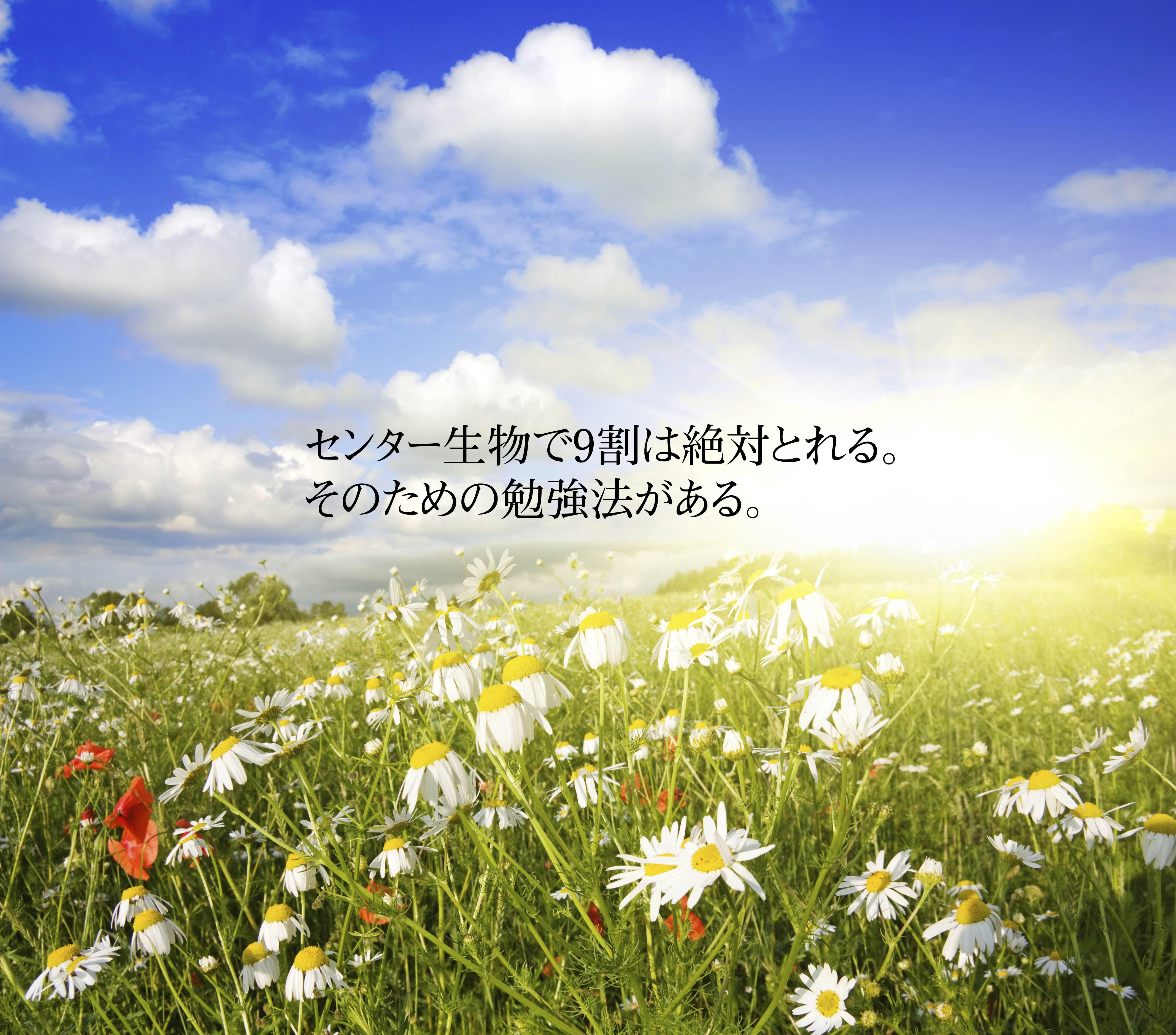goukaku-lab_2015-08-26_02-13-48.jpg